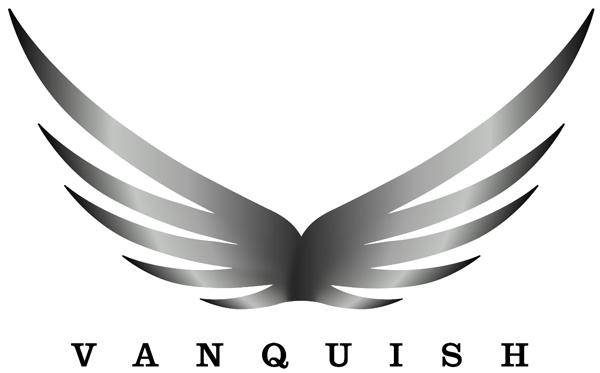 Vanquish Partner Logo